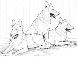 german shepherd dogs coloring free printable coloring pages