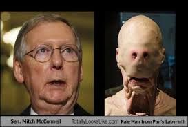 Mitch Mcconnell Meme - totally looks like mitch mcconnell cheezburger