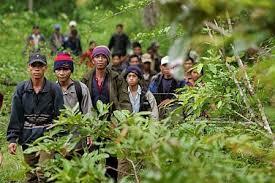 Essays on refugees and asylum seekers  O levels english essays pdf Do my admission essay canada