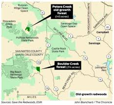 Castle Rock State Park Map by Group Tries To Save Old Growth Redwoods San Francisco Chronicle