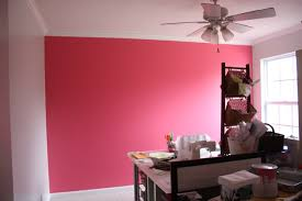 raechel myers pink