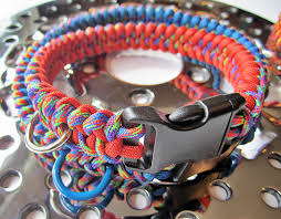mardi gras dog collars from solar orange and mardi gras custom paracord dog collar w d ring