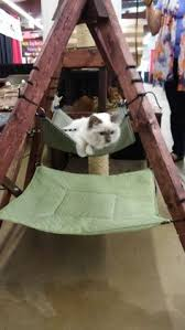 cat hammock pattern cat hammock with wood stand patent pending