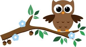 amazon com cute baby owl wall stickers with leaves flower and