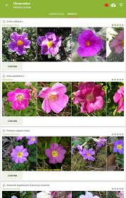 plantnet plant identification android apps on play