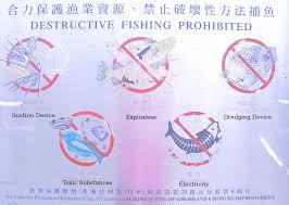 public html reportes de viaje by chato signos signs newfish