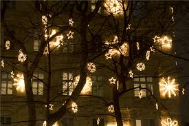 how to use string lights on outdoor trees savwi
