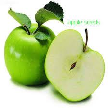 Online Fruit Trees For Sale - plant apple trees online plant apple trees for sale