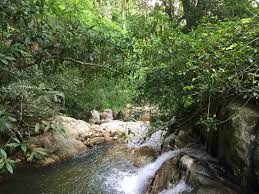 Ex Machina Waterfall Stunning 18 5 Acres Of Rain Forest With Waterfall South Sri