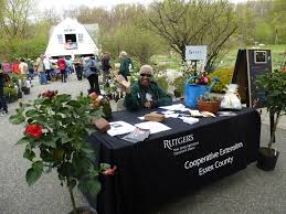 native plants of new jersey plant sale rutgers master gardeners of essex