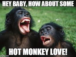Baby Monkey Meme - bonobo lyfe meme imgflip