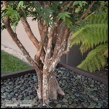 10 artificial japanese maple tree in modern fiberglass planter