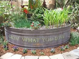 best 25 garden troughs ideas on pinterest plant troughs metal