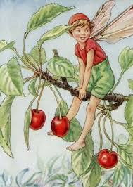buy christmas tree flower fairy by cicely mary barker in cheap