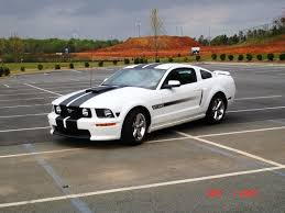 white 2009 mustang picture of my white gt cs the mustang source ford mustang forums