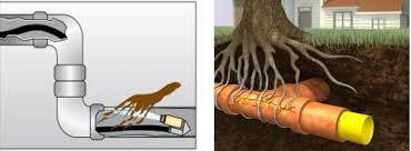 comment d饕oucher une canalisation de cuisine comment deboucher une canalisation exterieure d truire des racines
