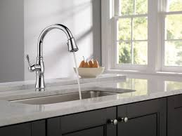 Delta Kitchen Faucet Handle by Sink U0026 Faucet Delta Kitchen Faucet Parts Amazon American