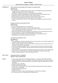 executive resume sles account sales executive resume sles velvet