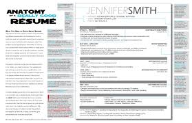 Sample Of A Good Resume by Examples Of Resumes Best Resume For Your Job Search Livecareer