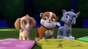 paw patrol cartoon pup pup boogie pups fog 43 video