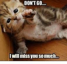 I Miss U Meme - don t go i will miss you so much meme on me me
