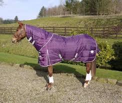 Purple Rug Sale Clearance 75g Stable Rug With Neck Purple Swish Equestrian Ltd