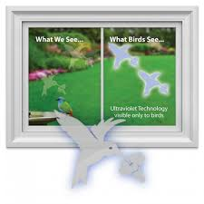 uv light for birds what do birds see into the air