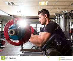 Bench Bicep Curls Biceps Preacher Bench Arm Curl Workout Man At Gym Stock Photo