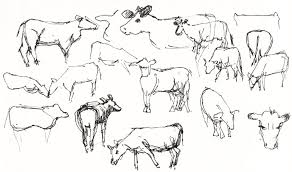 bull valley barn and cow studies jana bouc artist