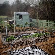 seasonal gardening u2013 homegrown kate