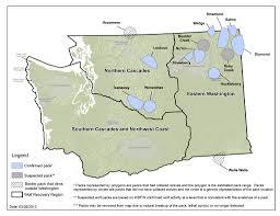 Maps Of Washington State by Washington Wolf Packs Washington Department Of Fish U0026 Wildlife