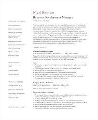 Resume Of Business Development Executive Sample Resume For Business Development Manager Sample Business