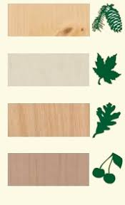 cabinet wood species and types kitchen cabinet depot