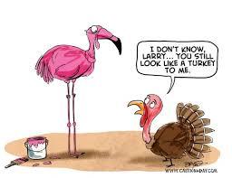 thanksgiving thanksgiving 2012 turkey