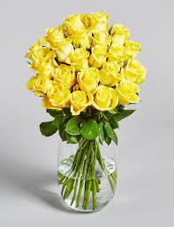 plants u0026 flowers fresh flowers delivery u0026s