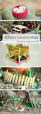 Mini Fairy Garden Ideas by Best 25 Diy Fairy Garden Ideas On Pinterest Diy Fairy House