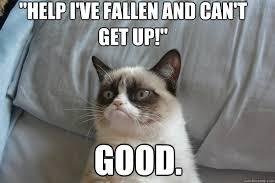 Help I Ve Fallen Meme - good help i ve fallen and can t get up grumpy cat good