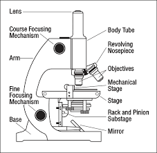 Parts Of A Compound Light Microscope Label The Microscope Parts Optics U0026 Binoculars