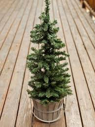real mini christmas tree with lights outdoor holiday decorating idea mini christmas tree hgtv