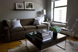 shocking light gray paint living room