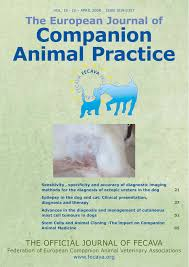 PDF The canine skin microbiota habitats acquisition interactions