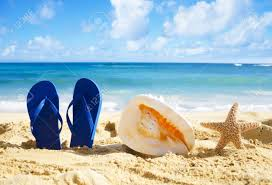 seashell flip flops blue flip flops big seashell and starfish on in