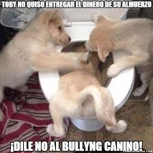Memes De Bullying - cuánto cabrón el bullying no entiende de especies