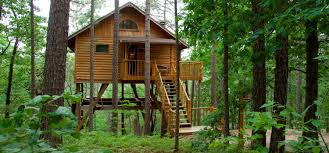 Building A Small Cabin In The Woods by Treehouses In Eureka Springs Arkansas Treehouse Cottages