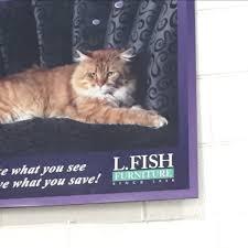 l fish furniture indianapolis in 46219 yp com