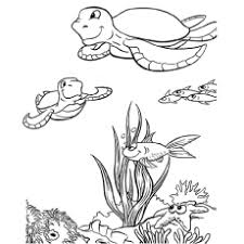 free printable sea life coloring pages top 15 free printable sea animals coloring pages online