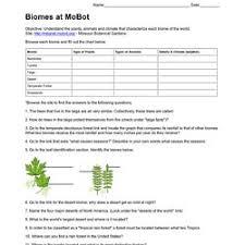 biology lauracochran pearltrees