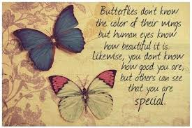 quotes about butterflies and top quotes butterflies