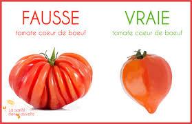 comment cuisiner du coeur de boeuf le scandale des fausses tomates coeur de boeuf