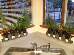 19 best indoor herb garden images on pinterest kitchen